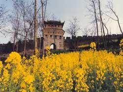 黄丝桥古城图片