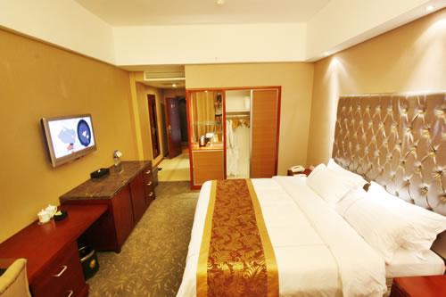 凤天国际大酒店 大床房